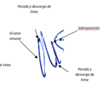 Grafología - Informes Periciales